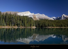 "The beautiful coast of Maligne Lake (Joalhi ""Back in Miami"") Tags: blue lake canada water reflections jasper alberta malignelake naturesfinest supershot canon5dmarkii coth5"