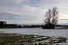 2011-01-09 Diessen, Ammersee 064