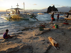 Unloading a bangka at Apo Island beach (omnia2070) Tags: philippines negros oriental province apo island beach boat bangka unload cargo supplies sunset wave sea ocean coast rock rocky mountain dog