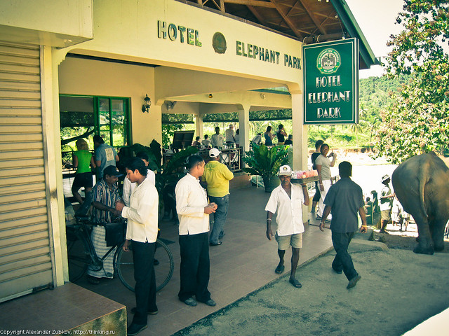 Отель Elephant Park