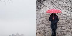 Sin titulo (argideraparicio.es) Tags: rojo retrato nieve alhambra paraguas niebla frio ramas