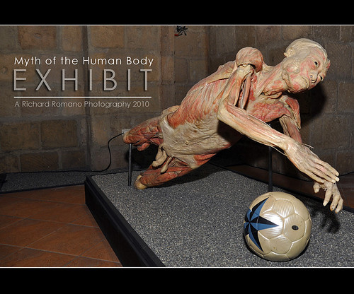 Myth of the Human Body Exhibit 2