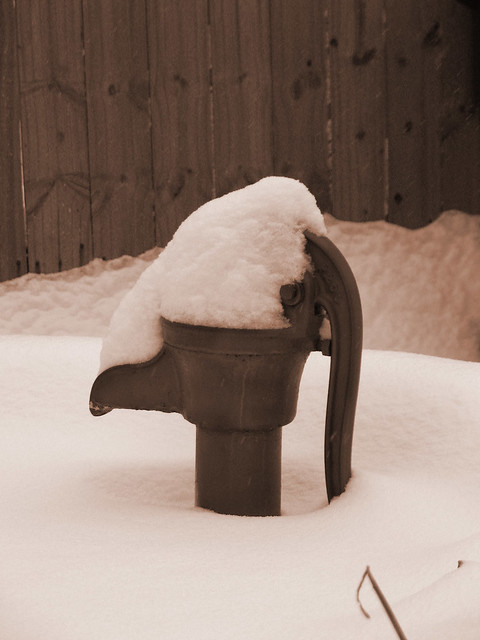 pump snow sepia