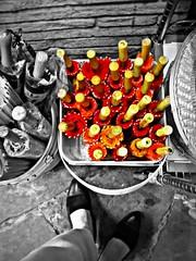 Umbrellas (goofcitygoof) Tags: sanfrancisco feet shoes chinatown umbrellas alexandrajones goofcitygoof httpsfbulldogcomalexandra httpsfbulldogcom goofcitygraphix herdingcatsno1 httpgoofcitycom httpmayorjonestumblrcom