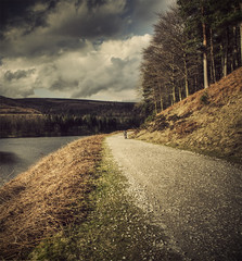 one day he may even make king of the mods (matthewheptinstall) Tags: peakdistrict country ladybowerreservoir ladybower