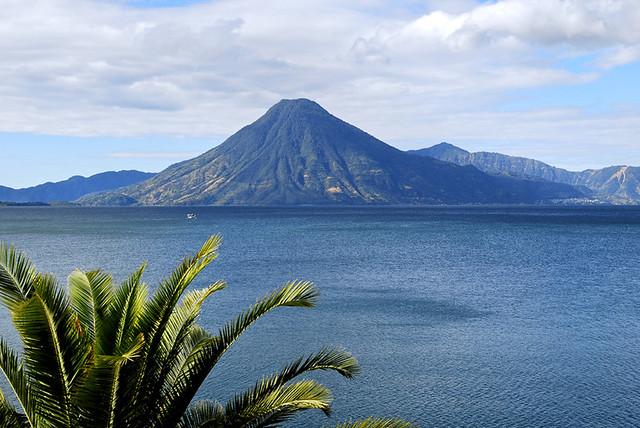Volcán San Pedro con palmera