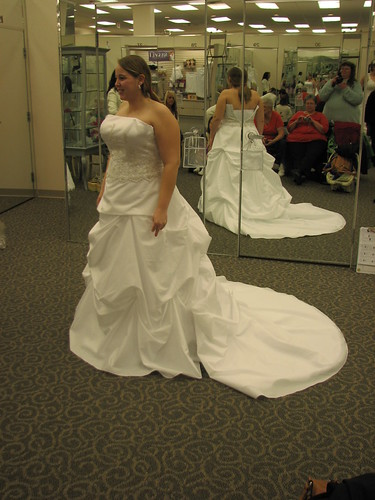 Ambers Wedding Dress - 2-13-11 047