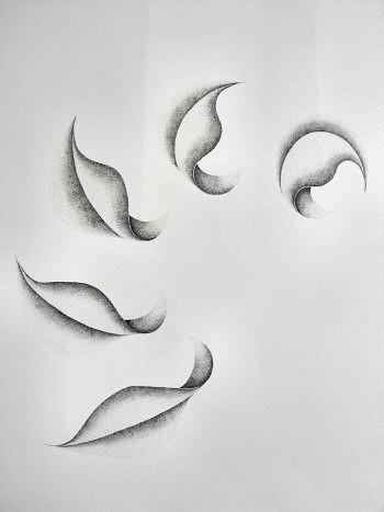 Dessin à l'encre, au point, sur papier aquarelle représentant une architecture végétale inspirée d'un pétale de dimension 36x48cm. Dans cette compositions les formes évoluent en s'ouvrant en suivant une ligne courbe vers la gauche – Sandrine Vallée