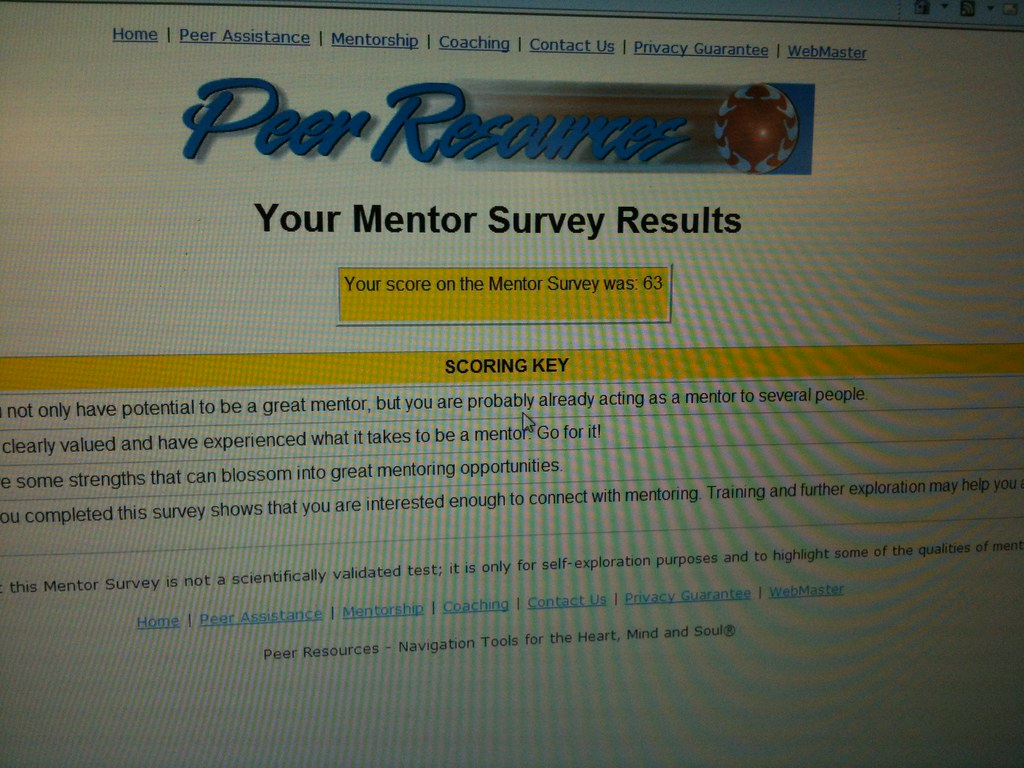 Should I be a mentor??
