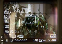 MagFinder_MonitorX_Canon7D-9.jpg