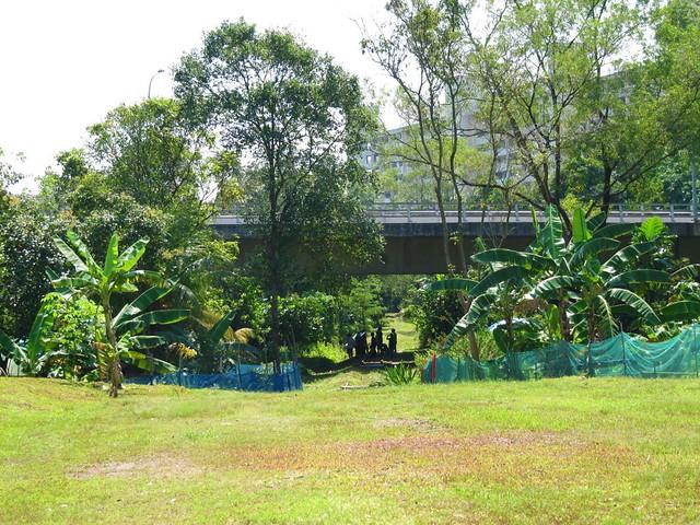 30 kampung near flyover