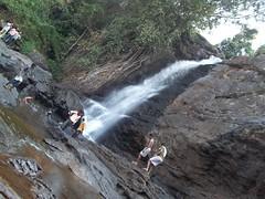 100_0250 (travellersai) Tags: kerala treehouse wayanad teaestate wildboar bandipur chital vythri banasuradam soojiparafalls streamvalleyresorts