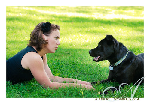 wellesley-ma-dog-puppy-portrait-pet-photographer- furkid session
