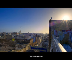 Morrocan Roofs (iPh4n70M) Tags: city roof sunset sky sun bird photography soleil photo nikon photographer photographie over coucher ciel morocco photograph maroc tc nikkor toit oiseau essaouira hdr mogador photographe 9xp d700 1424mm 9raw tcphotography ph4n70m iph4n70m tcphotographie