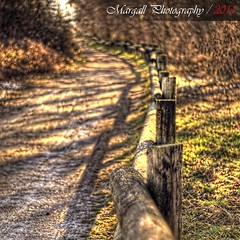 The fence - HDR - Cuneo - Italy - Meyer Optik 50mm f1,8 M42 (Margall photography) Tags: street parco canon vintage fence lens photography 50mm bokeh perspective m42 marco f18 cuneo hdr meyer 30d optik galletto margall fluviale