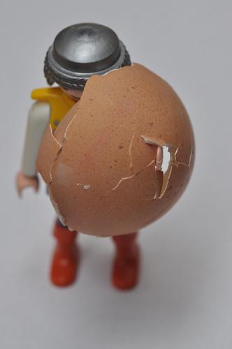 Eierschild