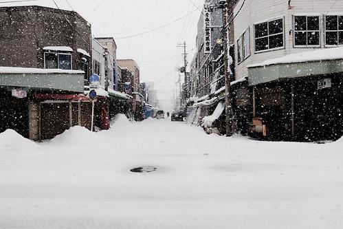 AOMORI, JAPAN #12 (青森駅周辺)