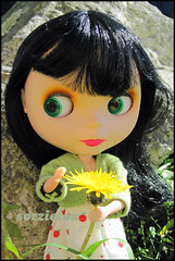 138/365 Dandelion (sozzielou) Tags: light sun flower green face grass leaves yellow rock stone print eyes weed hands doll dress side fringe dandelion jacket apples blythe brunette pick bangs goldie midday glance takara allgoldinone cardigan edna hold matte bolero grasp bl 365blythe