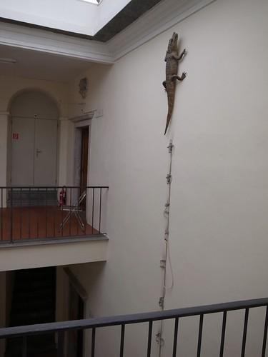 Museo comunale d'arte moderna, Ascona by tanajun2011