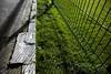 New fence (turgidson) Tags: ireland irish sport canon studio lens eos is football raw zoom soccer full developer ii frame wanderers pro l 5d usm fullframe dslr wicklow carlisle ef f4 grounds mk league bray converter markii silkypix 24105mm canonef24105mmf4lisusm braywanderers 41412 img9836 leagueofireland carlislegrounds canoneos5dmarkii canoneos5dmkii silkypixdeveloperstudiopro41412
