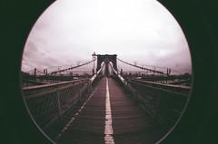 brooklyn (.Life.Tragedy.Disaster.) Tags: ny newyork love fisheye brooklynbridge