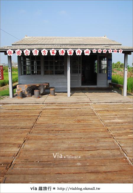 【嘉義景點】新港板頭村交趾剪粘藝術村~到處都是有趣的拍照景點!14