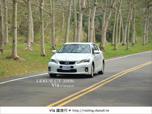 【苗栗一日遊】體驗試乘~和Lexus CT200h到郊外省油旅行去!8