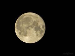 Super Moon in Toronto (fashionableheart) Tags: sky moon toronto ontario night nikon super full fullmoon coolpix l110 natureplus supermoon