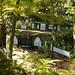Jardim Tropical Monte Palace_10