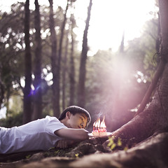 213/365 Another Year (brandonhuang) Tags: birthday trees light boy portrait sun sunlight selfportrait tree cake self fire lights candles glow candle dof bokeh flames cheesecake flame glowing brandonhuang