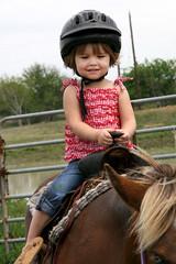 IMG_6084: I Like this Horse