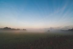Autumn Morning 24.09.2016 (lutzheidbrink) Tags: herford nrw germany deutschland naturschutzgebiet strommasten nature landsape landscape sunrise fog foggy mist misty