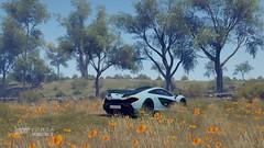 PMC Week 3 | #2 | FH3 (Mr. Pebb) Tags: forzahorizon3 turn10 playgroundgames xboxone photomode stockshot mclarenp1 british hypercar rear blue v8 rearwheeldrive rwd