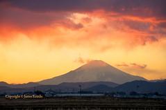 Sunset in Hiratsuka (James Kemlo (Junpei Hayakawa)) Tags: sunset sky orange sun mountains yellow japan clouds golden mountfuji farms kanagawa hiratsuka copyrightjameskemlo copyrightjunpeihayakawa