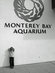 Relaxing at the Aquarium