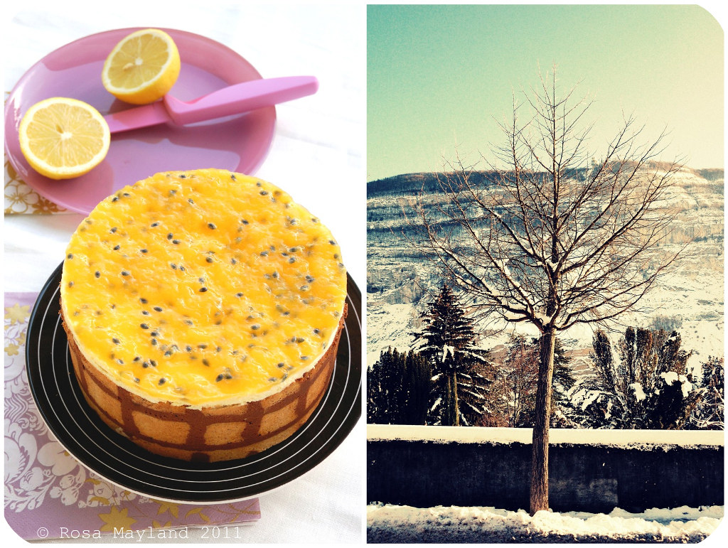 Entremet Lemon Picnik collage 2 bis