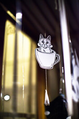 les libellules / detail by Giulia (juliette la bte) Tags: people blackandwhite window wearing animals shop kids illustration mugs mobiles circus drawings dressing bologna teapot teabags windowdressing teiera teahour