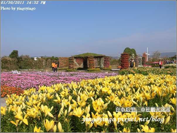 台中后里_中社光觀花市20110130_R0017625