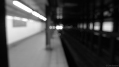 Photo of the Day - 2010.01.31 (Dan Reshef) Tags: new leica york nyc brooklyn train out focus parkway eastern
