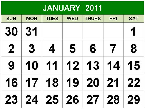 D1 Free DIY Calendar 2010 January Printable