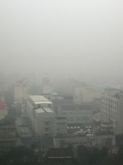 2011-01-23 - Shanghai sights - Fog