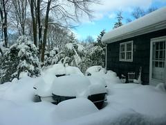2011 1/27 snow storm - ct