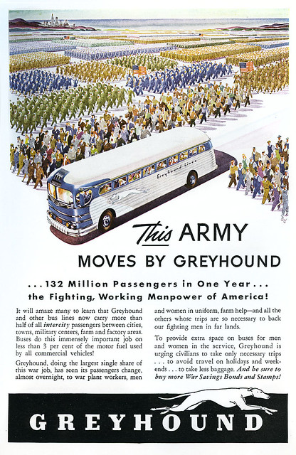 Greyhound_19433_tatteredandlost