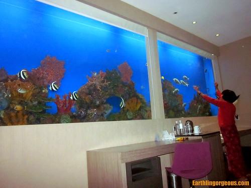Hotel H2O Aquaroom (Aquarium Room)