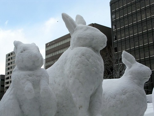 three snow rabbits