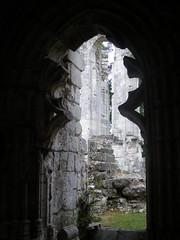 The walk of Charles VII (DameBoudicca) Tags: france broken window abbey ventana frankreich ruins fenster gothic medieval finestra normandie convent normandy francia fenêtre middleages gothique gotik medioevo frankrike gotico abbaye moyenâge fönster mittelalter gótico abanonded charlesvii edadmedia jumiège medeltiden