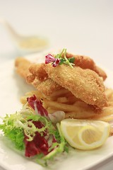 Finger Food - Breaded Dory Fish