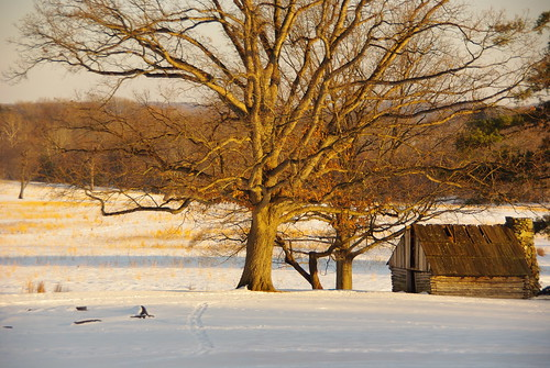 Lone cabin in a snowy field at Valley Forge