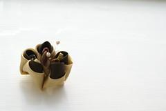 Kanzashi - Coffee (cuttlefishlove) Tags: flower japan japanese petals brooch silk craft ornament folding hairclip kanzashi fascinator hairornament habotai habotae