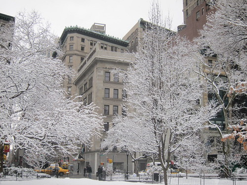 Madison Square Park nevado